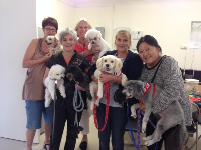 Dog Grooming Course July 2015