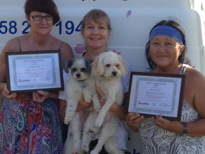 Dog Grooming Course February 2015