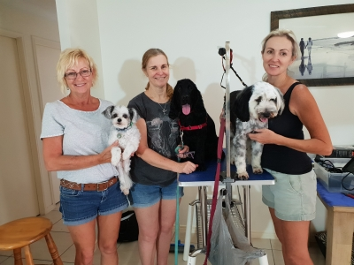 4-day Intensive Dog Grooming Course 2018