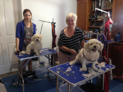 Learn Dog Grooming with Smooch a Pooch