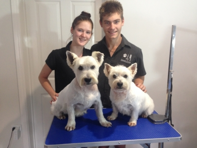 Westie Grooming Lessons for Rhiannon and Ryan