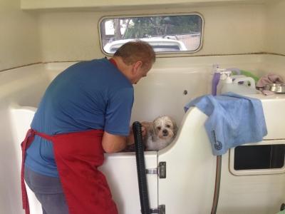 Learn to Bath a Dog with Smooch a Pooch