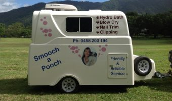 Mobile Dog Grooming Edge Hill